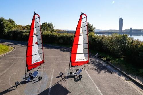 Red Crocodile Sails