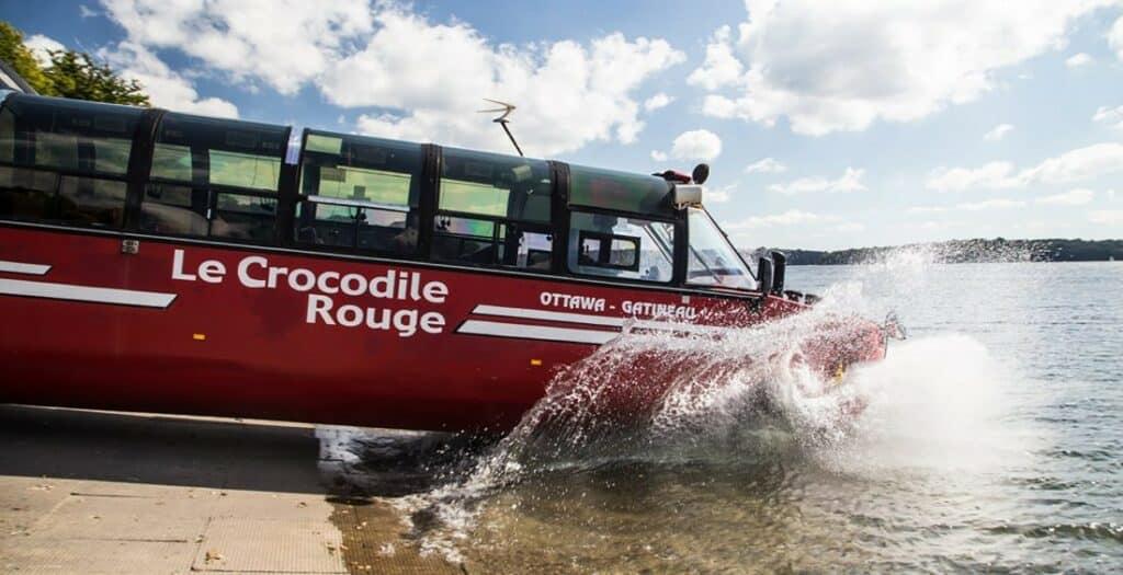 Crocodile rouge cerfontaine