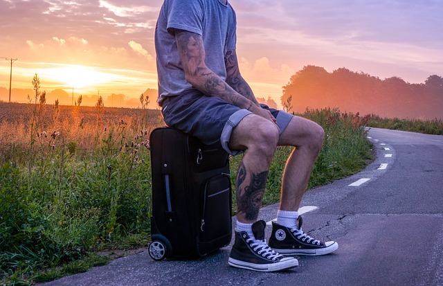 voyager et travailler emplois