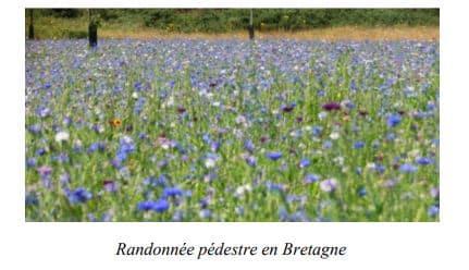 Bretagne - randonnée pedestre, Sud de la Bretagne