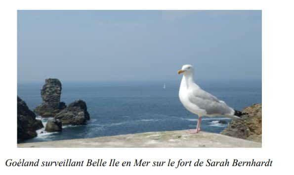 Fort de Sarah Bernhardt - Belle-île-en-mer, Sud de la Bretagne