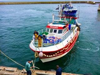 Bretagne authentique : 25 activités pour profiter de votre séjour en Finistère !