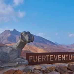 Les 13 choses incontournables à faire à Fuerteventura (en 2020)