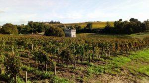 Saint Emilion : Visite Guidée (ne ratez rien d'essentiel)