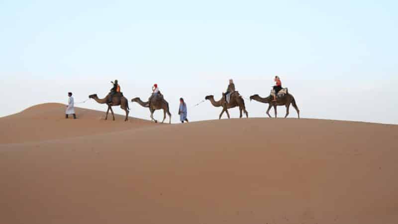 Qui sont les Principaux Acteurs du Tourisme ? (infographie et leur rôle)