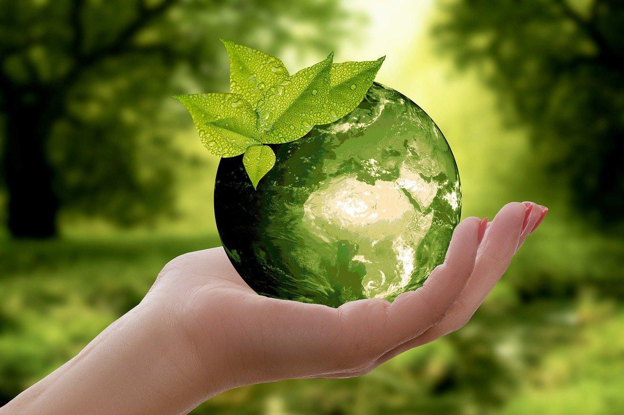 Quel est l'Impact du Tourisme sur l'Environnement ?(stats et réalité)