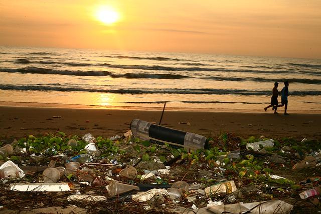 Quel est l'Impact du Tourisme sur l'Environnement ? (vraiment)